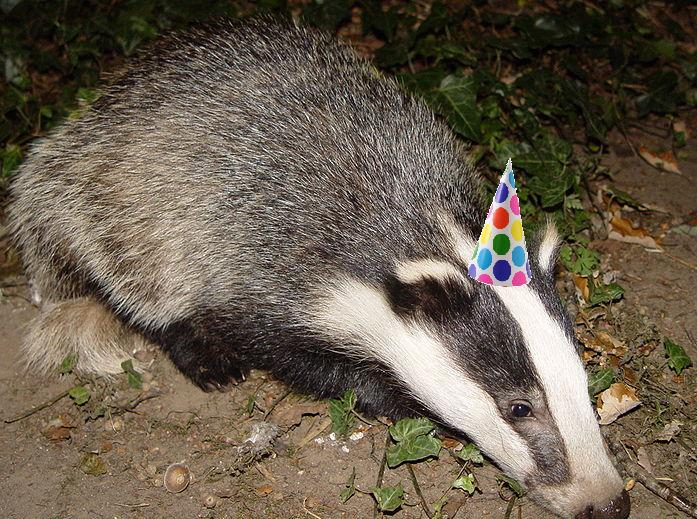 BadgerParty